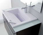 ZEUS COMBINED SYSTEM WASH BASIN/WASH TROUGH